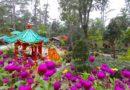 PHILIPPINEN MAGAZIN - BLOG - Baguio Botanical Garden