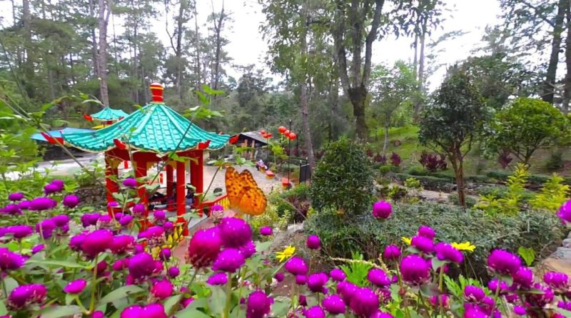 PHILIPPINEN MAGAZIN - BLOG - Baguio Botanical Garden