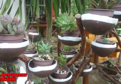 PHILIPPINEN MAGAZIN - FOTO DES TAGES - Gartendeko aus Kokosnussschalen Foto von Sir Dieter Sokoll für Philippinen Magazin