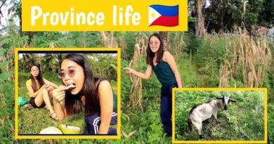 PHILIPPINEN MAGAZIN - VIDEOSAMMLUNG - Provinzleben in Mindanao