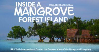PHILIPPINEN MAGAZIN - VIDEOSAMMLUNG - Entdecke eine Mangrovenwald-Insel