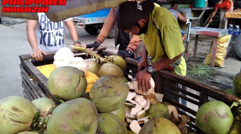 PHILIPPINEN MAGAZIN - FOTO DES TAGES - Erfrischung durch die Kokosnuss