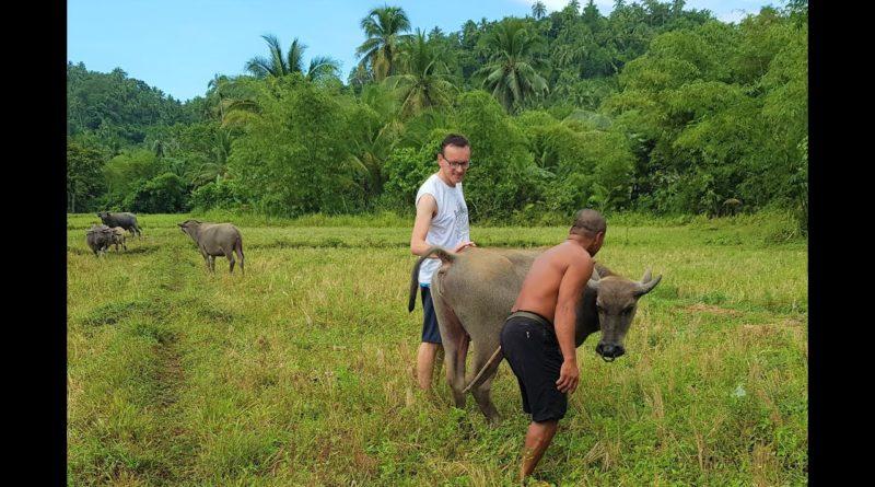 PHILIPPINEN MAGAZIN - VIDEOSAMMLUNG - Schöne Natur in Taft