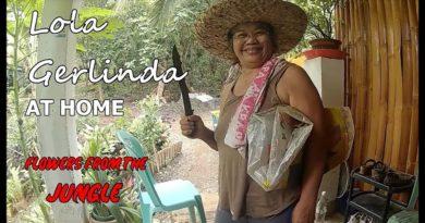 PHILIPPINEN MAGAZIN - Oma Gerlinda holt Pflanzen aus dem Dschungel Foto + Video von Sir Dieter Sokoll für PHILIPPINEN MAGAZIN