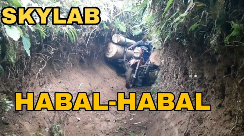 PHILIPPINEN MAGAZIN - Skylab Team Gadon transportiert Baumstämme mit dem Motorrad