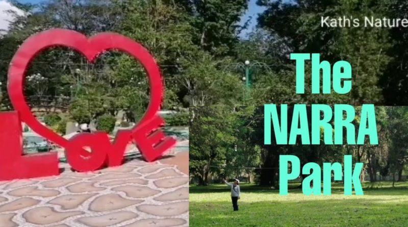 PHILIPPINEN MAGAZIN - VIDEOSAMMLUNG - Der Narra Park
