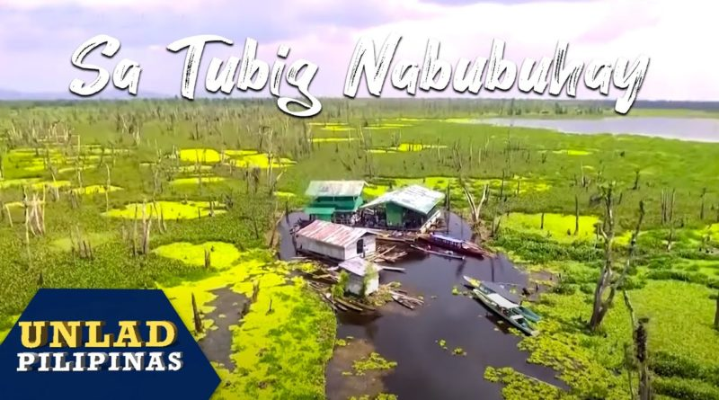 PHILIPPINEN MAGAZIN - VIDEOSAMMLUNG - Leben mit und auf dem Wasser - in den Agusan Sümpfen