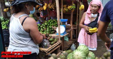 PHILIPPINEN MAGAZIN - FOTO DES TAGES - Obstkauf am Straßenrand Foto von Sir Dieter Sokoll für PHILIPPINEN MAGAZIN