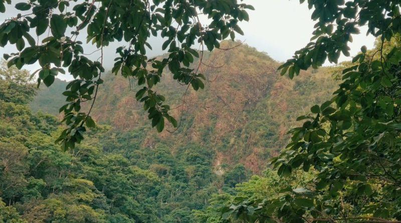 PHILIPPINEN MAGAZIN - VIDEOSAMMLUNG - Am Catingas Fluss auf Sibuyan