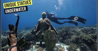PHILIPPINEN MAGAZIN - BLOG - Unterwasser-Statuen in Alegria