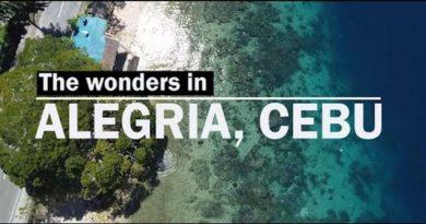 PHILIPPINEN MAGAZIN - VIDEOSAMMLUNG - Die Wunder in Alegria
