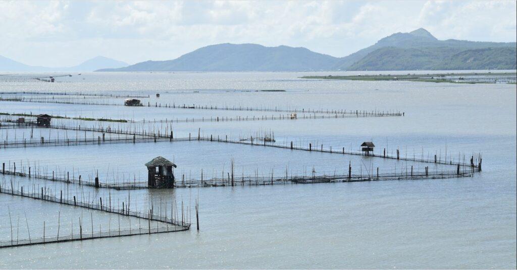 PHILIPPINEN MAGAZIN - TAGESTHEMA - Laguna de Bay ist der größte philippinische See