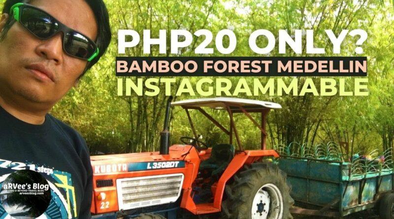 PHILIPPINEN MAGAZIN - VIDEOSAMMLUNG - Im Bambuswald von Medellin Cebu