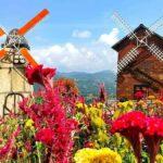 Sirao Flower Garden – Klein-Amsterdam in Cebu