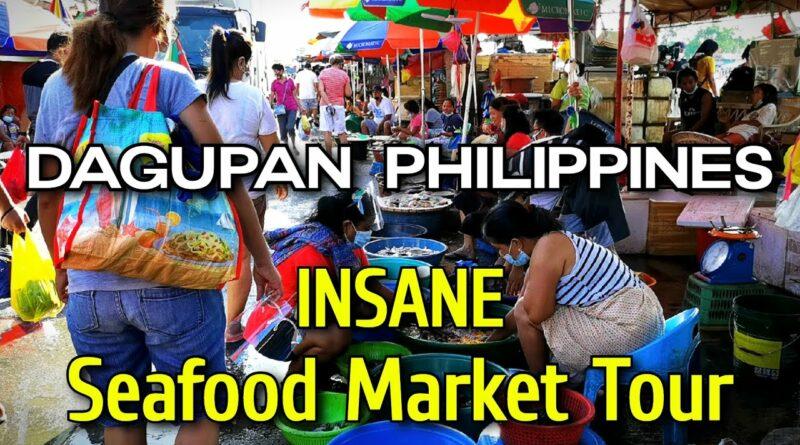 PHILIPPINEN MAGAZIN - VIDEOSAMMLUNG - Verrückter Meeresfrüchtemarkt in Dagupan
