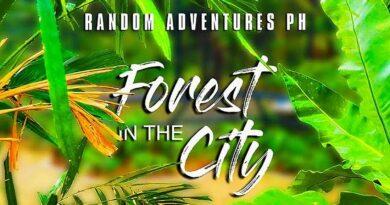 PHILIPPINEN MAGAZIN - VIDEOSAMMLUNG - Ein Wald in der Stadt