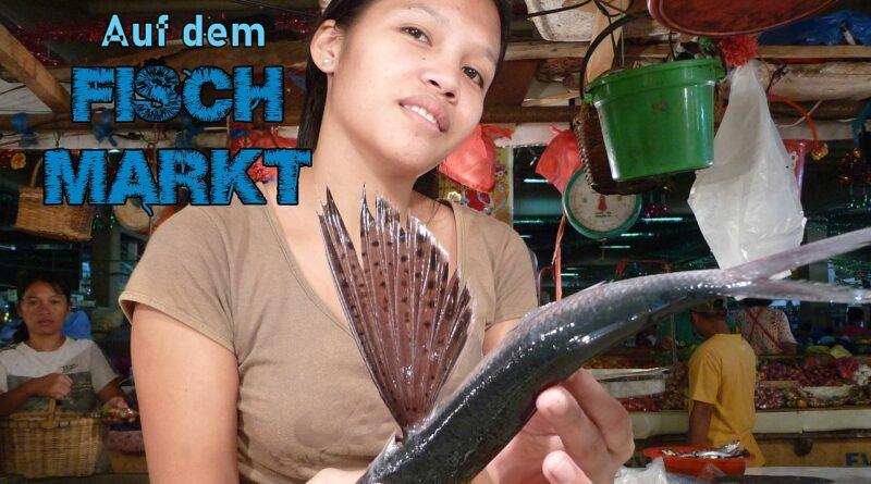 PHILIPPINEN MAGAZIN - VIDEOKANAL - Auf dem Fischmarkt Foto und Video von Sir Dieter Sokoll