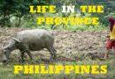 PHILIPPINEN MAGAZIN - VIDEOSAMMLUNG - Philippinisches Landleben