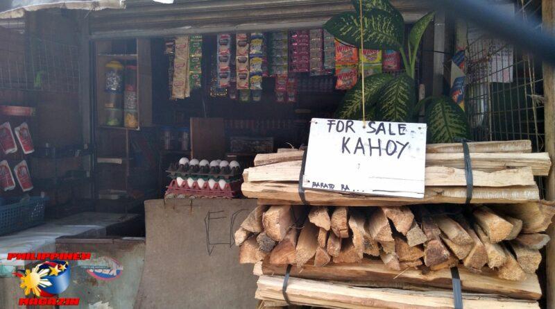 PHILIPPINEN MAGAZIN -FOTO DES TAGES - Feuerholz zu verkaufen Foto von Sir Dieter Sokoll