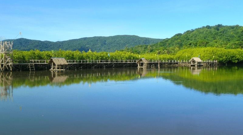 PHILIPPINEN MAGAZIN - DER BLOG - Batalay Mangrove Eco Park