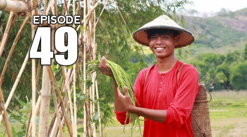 PHILIPPINEN MAGAZIN - VIDEOSAMMLUNG - Anpflanzen von Stangenbohnen und kochen von Pinakbet | Vom Saatgut auf den Tisch