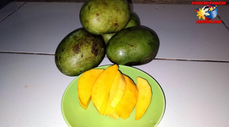 PHILIPPINEN MAGAZIN - FOTO DES TAGES - Erfrischender Fruchtimbiß Foto von Sir Dieter Sokoll