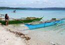 PHILIPPINEN MAGAZIN - REISEN - INSELN - LUZON - Touristische Inselbeschreibung für Daegan